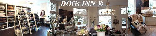 DOGs-INN-2010-Banner-mitte